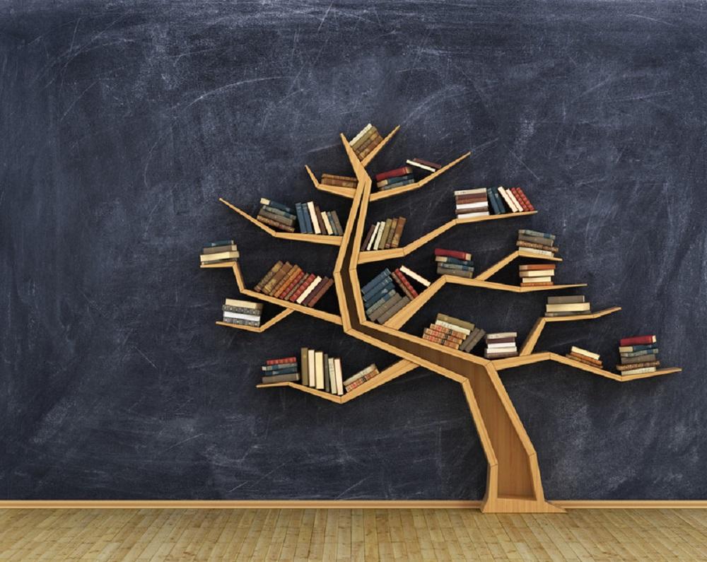 bookshelf concept